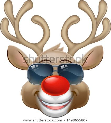 северный · олень · Солнцезащитные · очки · Дед · Мороз · оленей · белый - Сток-фото © krisdog