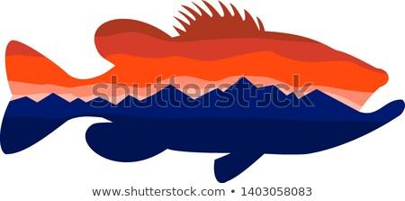 largemouth bass mountains silhouette retro stock photo © patrimonio