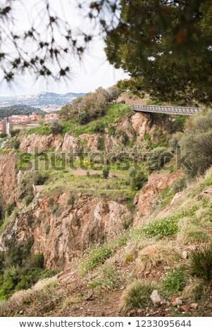 Ponte parque Barcelona Espanha árvore edifício Foto stock © ShustrikS