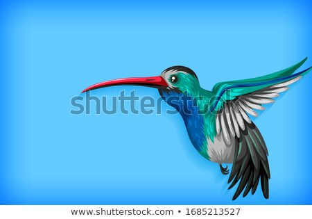 Background template with plain color and hummingbird Stock photo © bluering