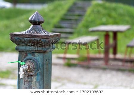 Vecchio ghisa acqua fontana vuota urbana Foto d'archivio © Giulio_Fornasar