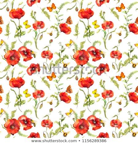 vermelho · papoula · inseto · natureza · fundo · verde - foto stock © pixelman