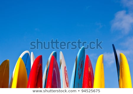Bright Surf & Paddle Boards Stock photo © mosnell