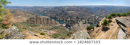 dam in the river Stock photo © rufous