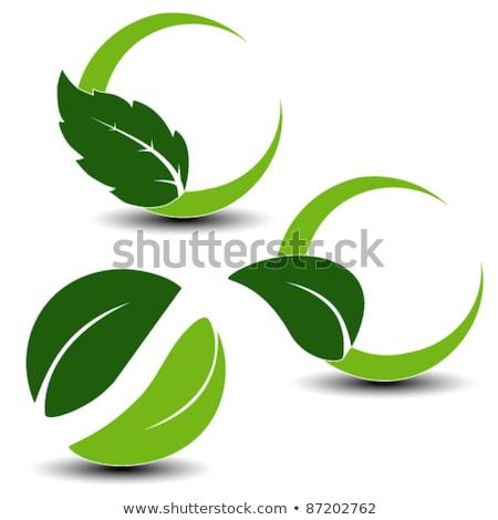 экология · иконки · окружающий · весны · природы · лист - Сток-фото © radoma