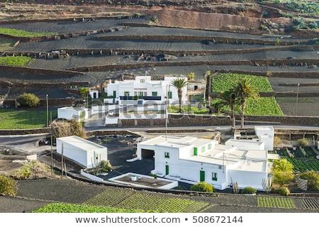 farmhouse in rural hilly area in Lanzarote  Stock photo © meinzahn