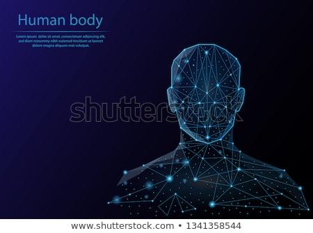 emberi · sziluett · absztrakt · kék · technológia · gyönyörű - stock fotó © beaubelle