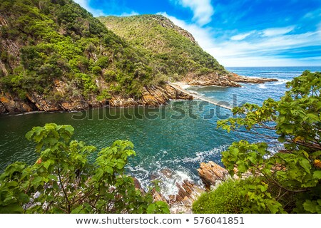 tsitsikamma national park south africa stock photo © dirkr