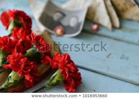 Carnations, St. George ribbon and an old letter Stock photo © Valeriy