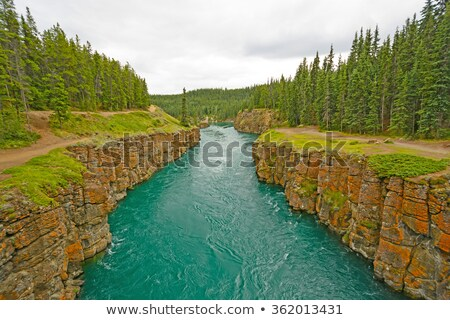 Fast Moving Water in a Remote Canyon Stock photo © wildnerdpix