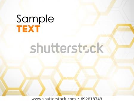 Folleto naranja células fondos negocios diseno Foto stock © sdmix