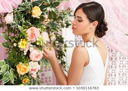 Delicate brunette posing in a stylish room Stock photo © konradbak