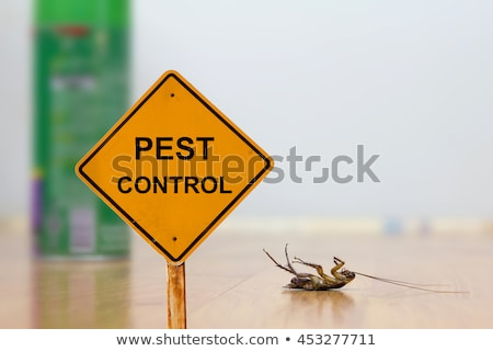 stop pest Stock photo © adrenalina