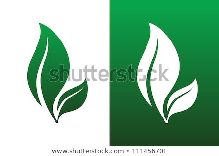 bunch of green leafs eco nature background Stock photo © SArts