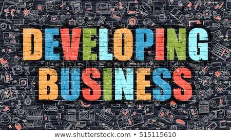 professional development in multicolor doodle design stock photo © tashatuvango