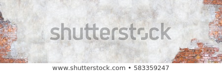 pęknięty · gipsu · ściany · wyblakły · domu - zdjęcia stock © grafvision