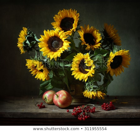 Still life with apples and sunflowers Stock photo © Melnyk
