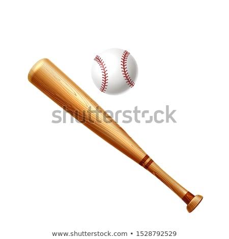 Honkbalknuppel geïsoleerd sport stick hout ontwerp Stockfoto © popaukropa