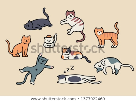 Vector breed cats icons sticker set. Cute animal illustrations pet design. Collection different kitt Stock photo © Linetale