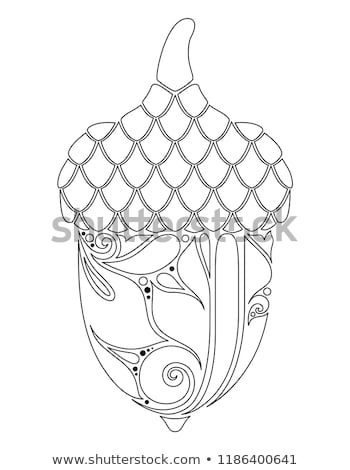 Décoratif gland automne usine floral Photo stock © lissantee