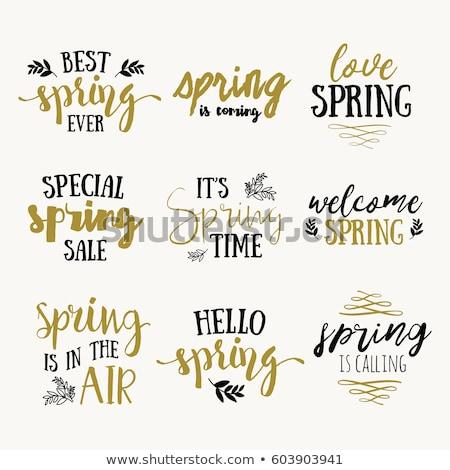 Lovely Summer Best Time Set Vector Illustration Stock photo © robuart