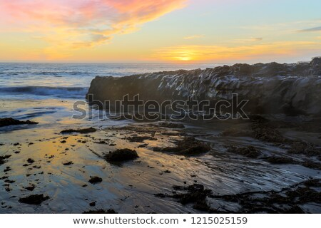 sunset over four mile beach stock photo © yhelfman