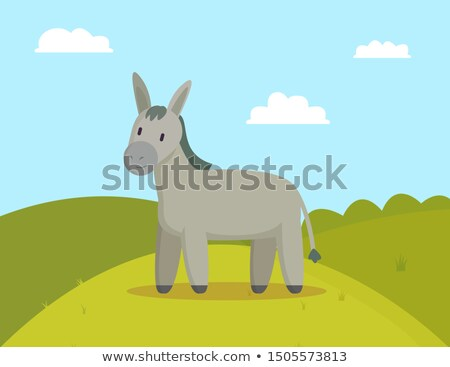 Donkey Farm Animal Graze on Meadow Colorful Banner Stock photo © robuart
