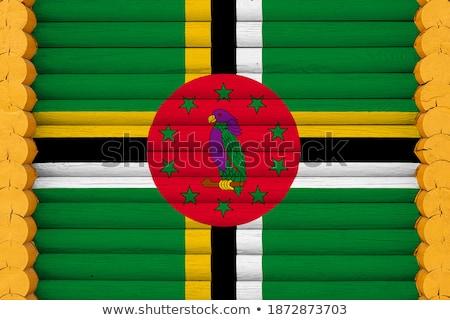 Casa bandeira Dominica branco casas Foto stock © MikhailMishchenko
