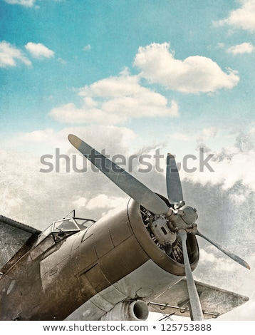 Color vintage Aviation poster Stock fotó © netkov1