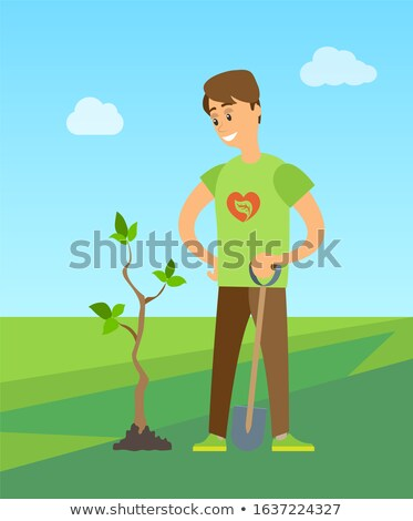 Man Planting Tree Digging Soil to Plant New Birch Stock photo © robuart