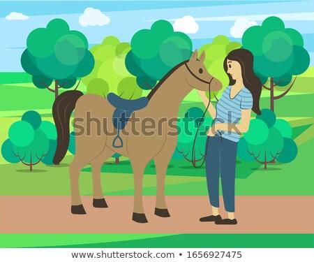 Foto stock: Semental · parque · caballo · forestales · vector · animales