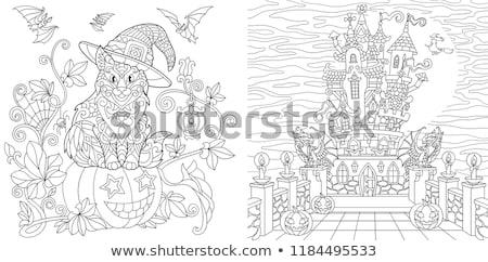 White Line drawing of Halloween castle set Stock photo © Blue_daemon