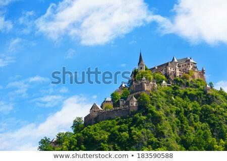 Kasteel Oostenrijk een middeleeuwse kastelen Stockfoto © borisb17