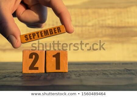 Cubes calendrier rouge blanche icône vingt Photo stock © Oakozhan