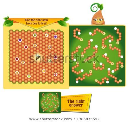 Encontrar direito caminho abelha fruto jogo Foto stock © Olena