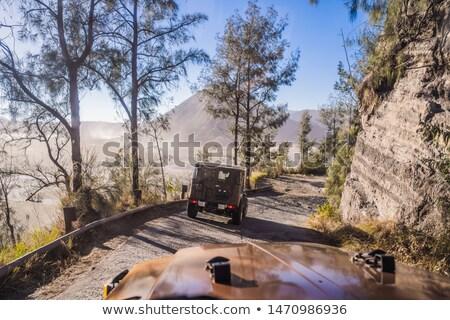 Binnenkant auto paardrijden beneden weg Stockfoto © galitskaya