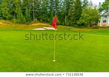 Golf klub turniej czerwony banderą tle Zdjęcia stock © yupiramos