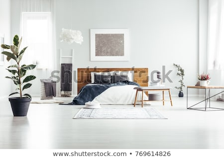 Potted plants and ladder in cozy room Stock photo © dashapetrenko