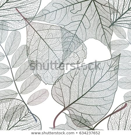 Fresh abstract leaf elements stock photo © orson