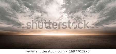 Stock fotó: Horizont · vad · madarak · nap