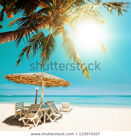 Tropical beach in sunny day. Square composition. Stock photo © moses