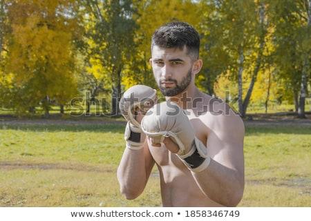 Portret jonge man boksen houding witte mannelijke Stockfoto © wavebreak_media