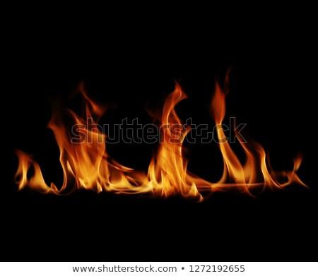 flames on black Stock photo © ArenaCreative