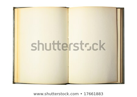 Old open book with blank pages from above Stock photo © stevanovicigor