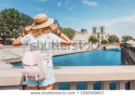 Meisje begeleiden Parijs illustratie glimlach gelukkig Stockfoto © adrenalina