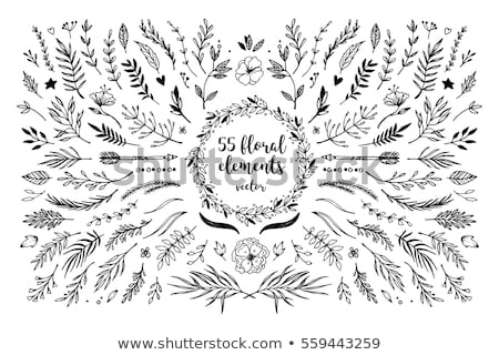 Frame with retro floral elements  Stock photo © itmuryn