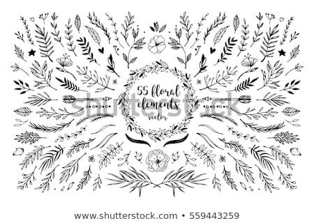 keret · retro · virágmintás · elemek · vektor · tavasz - stock fotó © itmuryn