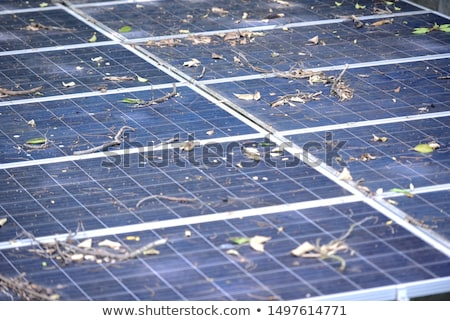 Stockfoto: Zonnepanelen · oppervlak · technologie · hernieuwbare · energie · macht · industrie