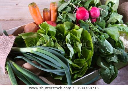 fresh eggplants, tomatoes, zucchini and spring onion Stock photo © Digifoodstock
