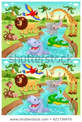 Farklı hayvanlar gölet sahne örnek su Stok fotoğraf © bluering
